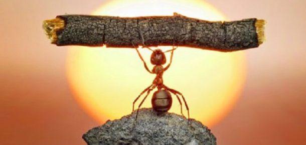 Kendine güveni tam olan insanların vazgeçtiği alışkanlıklar