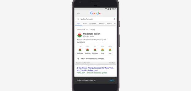 Google sizi alerjilerinizden kurtarmak istiyor