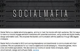 Social Mafia - LinkedIn